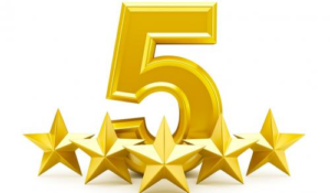 5 star review for Extreme Mobile Gaming Florida